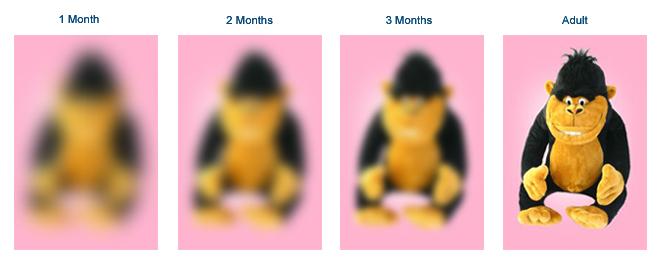 Як бачить дитина в 1, 2, 3 місяці порівняно з дорослим